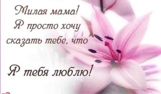 стихи для мамы на день матери до слез от дочери