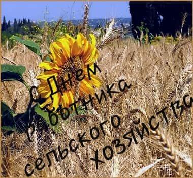 открытки с днем работника сельского хозяйства и перерабатывающей