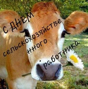 открытки с днем сельского хозяйства