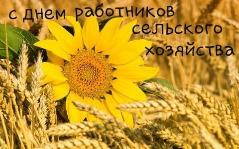 поздравления с днем сельского хозяйства в прозе другу