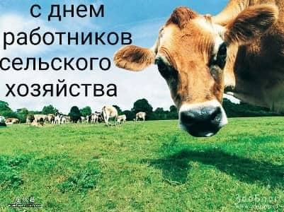 поздравить с днем сельского хозяйства в прозе
