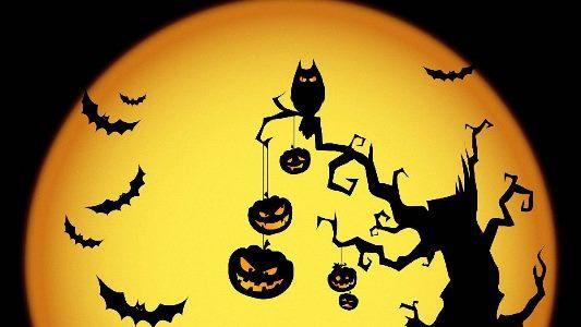картинка тыквы на хэллоуин для детей