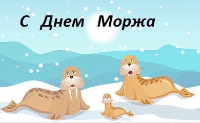 день моржа в дет саду