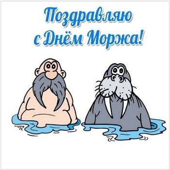 день моржа 24 ноября открытки с пожеланиями