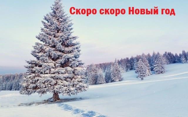 скоро новый год картинки с надписью