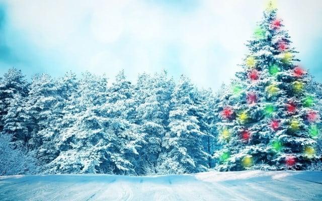 сказочные новогодние обои 2019 на рабочий стол