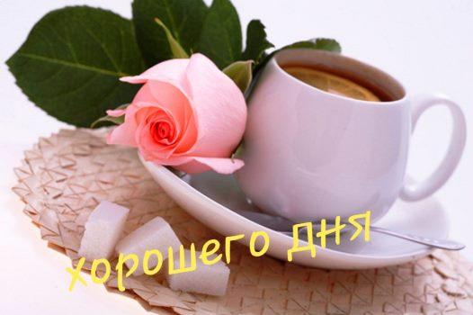 день чая казань