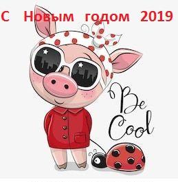 картинки свиней прикольные рисованные