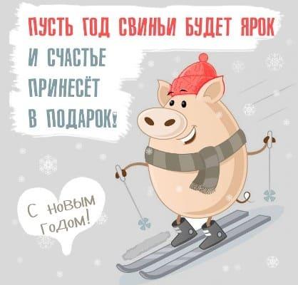год свиньи картинки новогодние прикольные