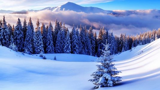 обои на рабочий стол 1920х1080 зима новый год рождество 2020 мотив деньги в долг