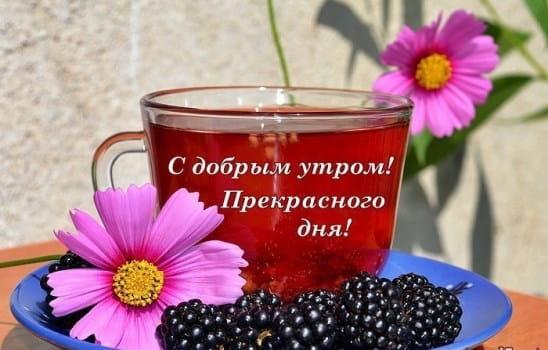 день чая как праздновать