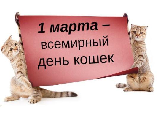 всемирный день кошек поздравляю