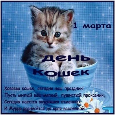 всемирный день кошек поздравления открытки