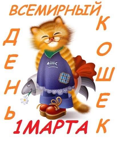 всемирный день кошек картинки смешные