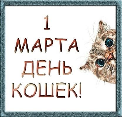 день кошек в россии конспект урока