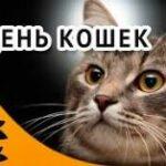 1 марта всемирный день кошек