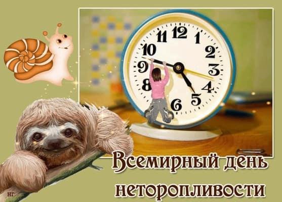 картинки про ленивцев