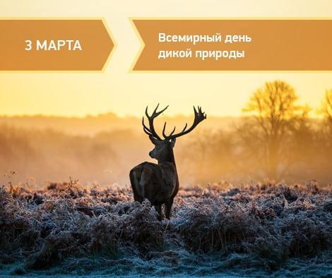 день дикой природы праздник