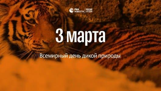 день всемирного фонда дикой природы