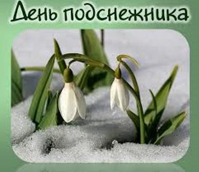 колокольчики в снегу фото