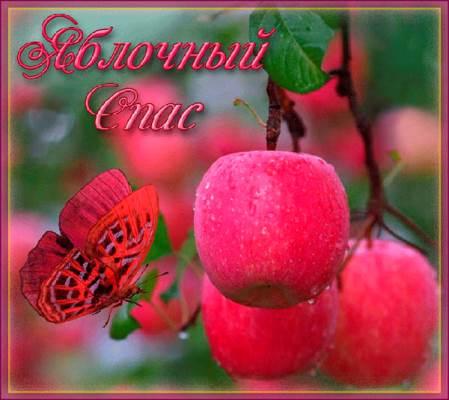 картинка яблочный спас для детей