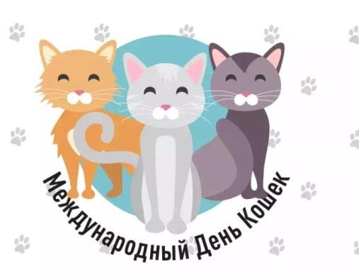 международный день кошек картинки прикольные