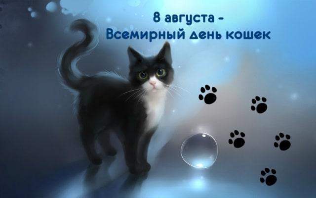 день кошек картинки смешные