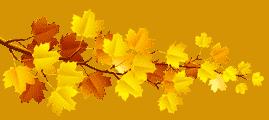 Поздравления и стихи на 1 сентября учителям