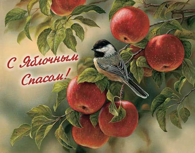 яблочный спас поздравления в картинках