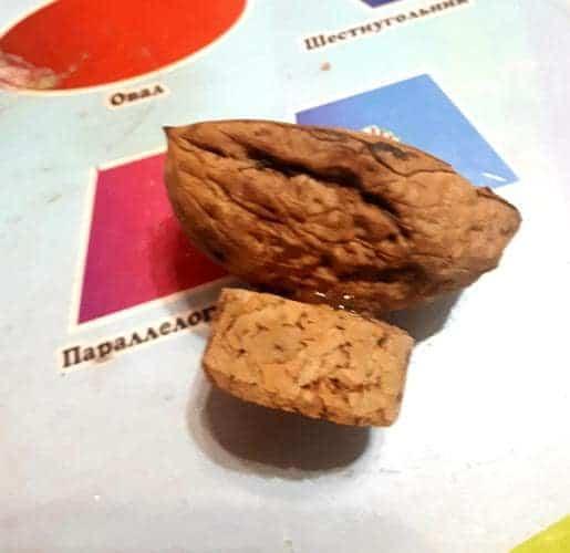 осенние поделки из орехов