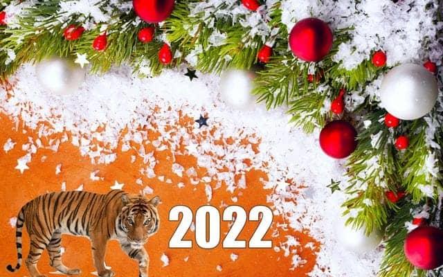 с Новым Годом Тигра - поздравления своими словами