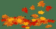 Прикольные Стихи поздравления на 1 сентября для 11 класса