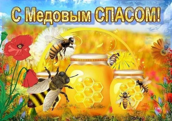 С медовым спасом, картинки с пчелами, прикольные картинки с Медовым спасом, с началом успенского поста, Открытки со спасом